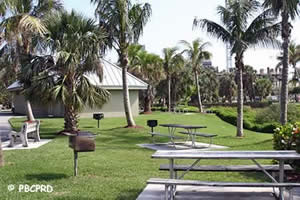 picnic area at ocean reef