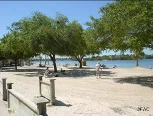 small sandy beach at anclote river park to soak up the sun