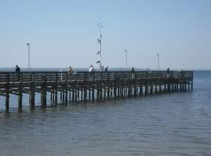 anclote river fishing pier