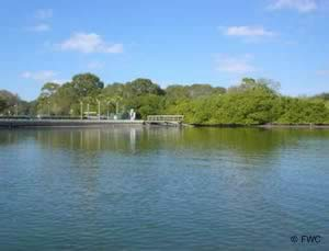 Boat launch at coffee pot park florida
