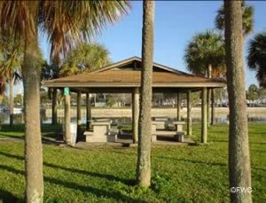 picnic area at demens landing in st petersburg florida