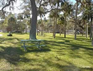 picnic at the dunedin marina