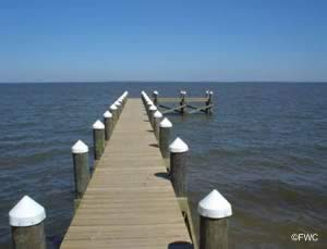 dock for fishing at bal alex ramp