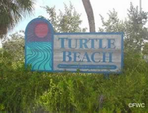 entrance sign to turtle beach