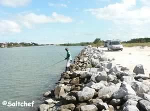 fishing shoreline at helen mellon schmidt park