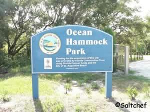 ocean hammock park st augustine beach