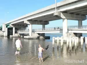 Public fishing piers st augustine vilano st johns county for Fishing piers near me
