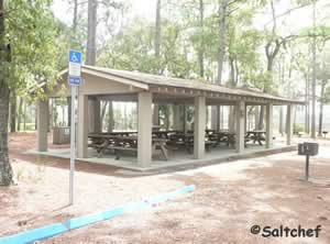 pavilion at faver dykes state park