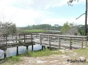fishing dock at faver dykes state park st johns county