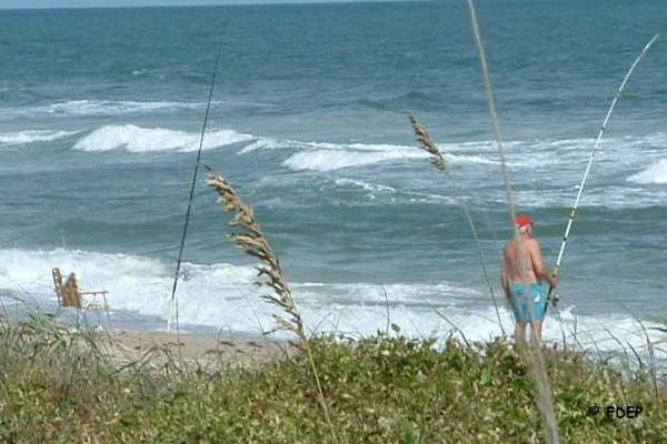 surf fishing at avalon state park fort pierce