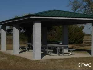picnic pavilion at dark island taylor county fl