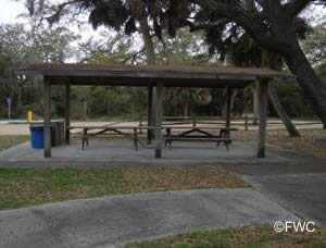 picnic pavilion at ecofina state park