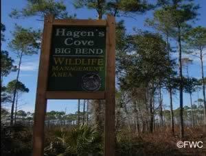 sign at hagen's cove big bend