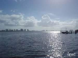 water view at riverfront park south daytona