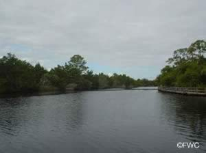 water view from sanchez park ormond beach florida