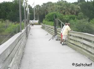 fish on bridge that goes to manatee island