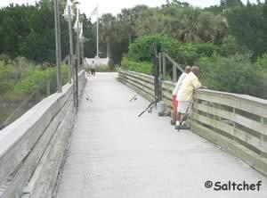 fish on bridge that goes to manatee island