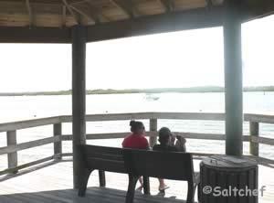 halifax river fishing ponce inlet florida