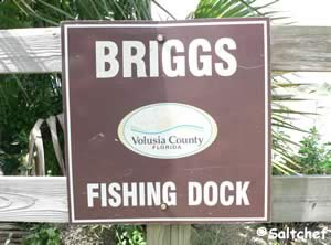 briggs drive fishing dock ormond beach florida