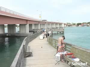 fishing pier near bridge at buena park NSB fl