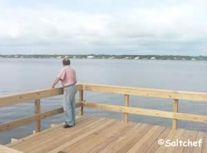 intercoastal saltwater fishing dock 32176