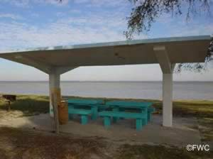picnic along the shores of southern choctawhatchee bay near miramar beach