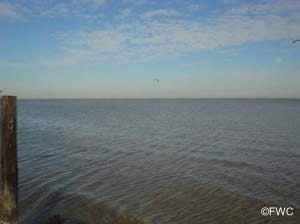 view of choctawhatchee bay from legion park in miramar beach florida