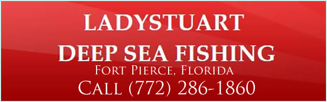 ladystuart fishing charters fort pierce fl