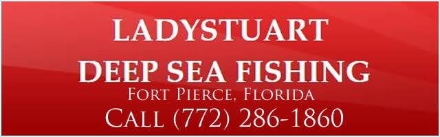 ladystuart fishing charters fort pierce fl