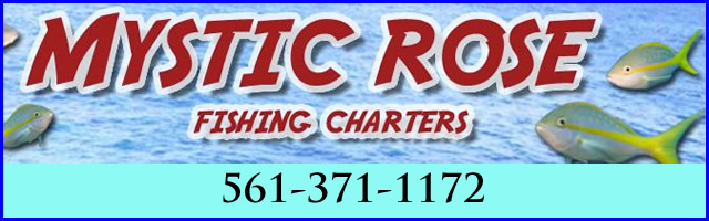 mystic rose fishing charters fl