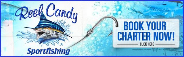 reel candy sportfishing fl