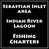 fishing charters sebastian inlet area of florida