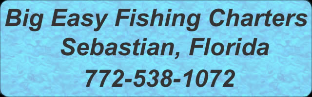 Indian river lagoon sebastian fishing charters sport for Charter fishing sebastian fl