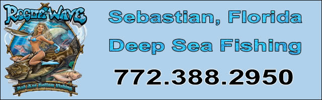 rogue wave fishing charters sebastian fl