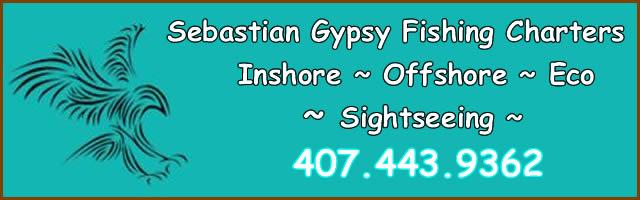 gypsy fishing charters sebastian fl