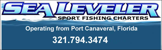 sea leveler fishing charters