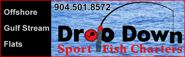 drop down sport fish charters st augustine