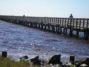 bell island fishing pier in swanquarter nc