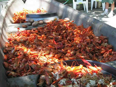 crawfish boil including the potatos