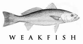 weakfish