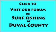 duval county surf fishing forum