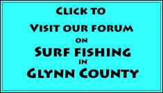 go to glynn county surf fishing forum
